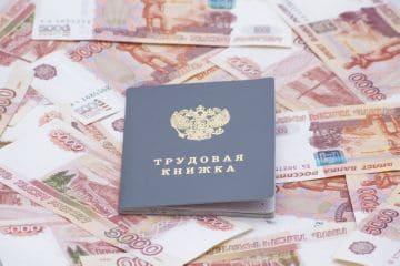 трудовая книжка работника РФ