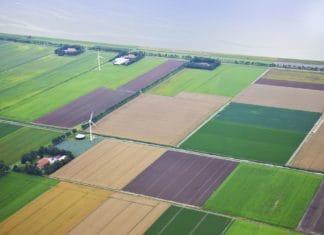 предоставление в аренду земельных участков без торгов