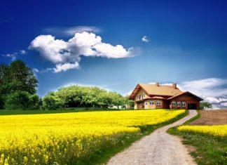 предоставление земельных участков бессрочное пользование земельным участком