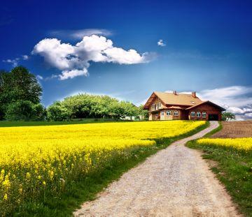 сроки аренды земли