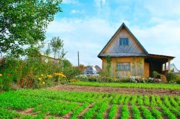 садовый участок с домиком