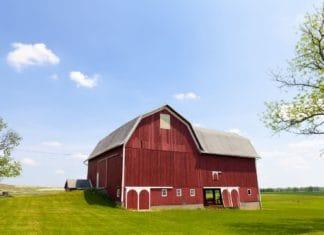 договор купли продажи здания с земельным участком