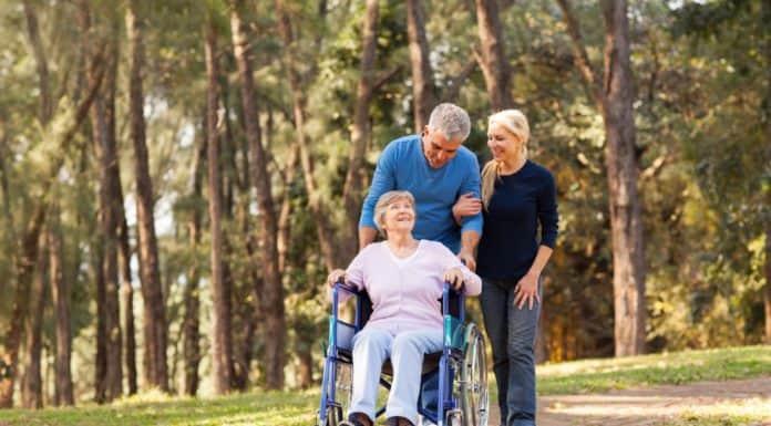 как получить земельный участок инвалиду 2 группы