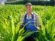 как получить землю для фермерского хозяйства