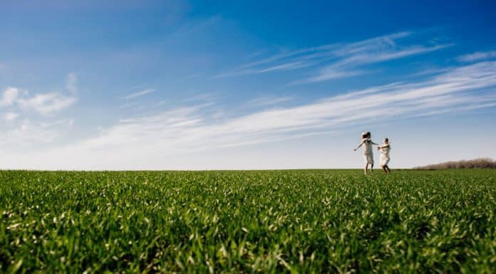 право ограниченного пользования чужим земельным участком земельное право