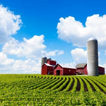 сельскохозяйственный земельный участок