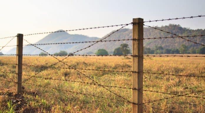 вынос границ земельного участка в натуру