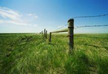 наложение границ земельного участка на ранее учтенный участок