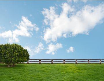 приватизированный земельный участок