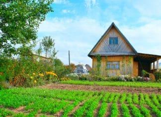 как приватизировать дачу по садовой книжке