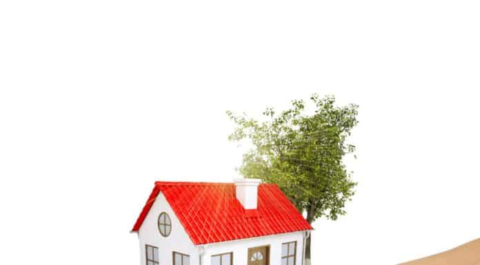как оформить участок земли в собственность если нет хозяина