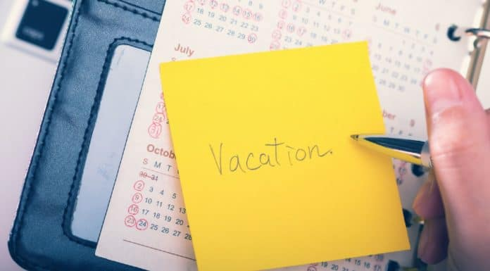 сколько дней отпуска положено после 6 месяцев работы