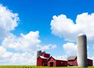 земля в аренду под сельское хозяйство цена