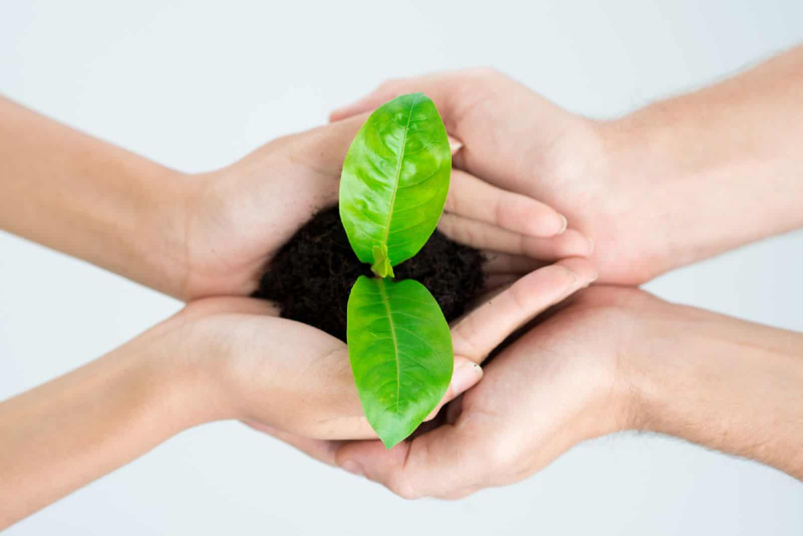 Как оформить договор дарения на земельный участок