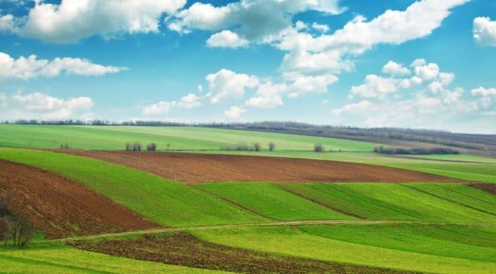 продление аренды земельного участка