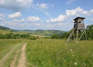 договор переуступки права аренды земельного участка между физ лицами