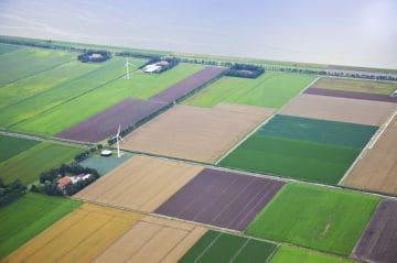 земли сельхоз назначения