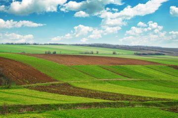 земельный участок под сельское хозяйство