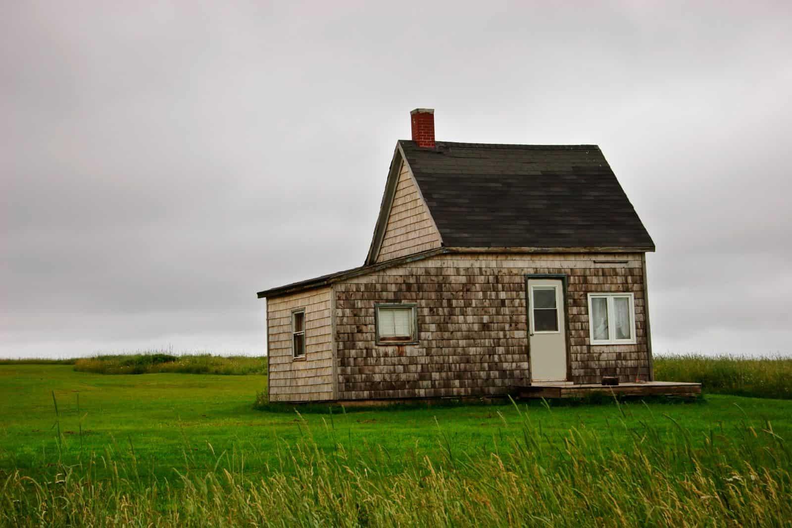 предоставление земельного участка без торгов в аренду