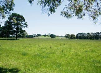 Основания для отказа в предоставлении земельного участка