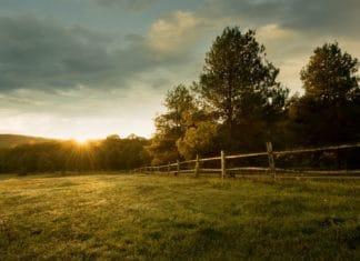 использование земель не по их целевому назначению