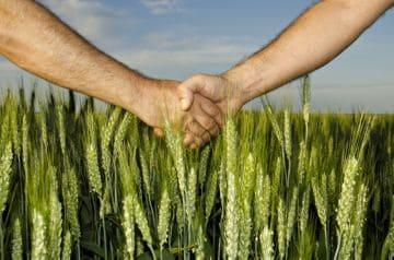 земля для выращивания с/х культур