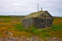 заявление на прекращение права собственности на земельный участок