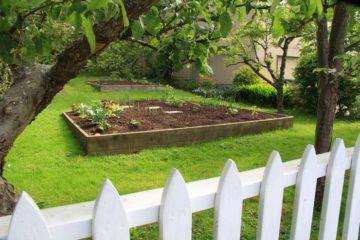 Как перевести садовый участок из СНТ в ИЖС