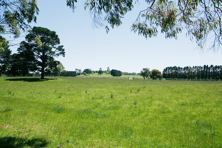 Как можно узнать вид разрешенного использования земельного участка и что для этого нужно в 2019 году