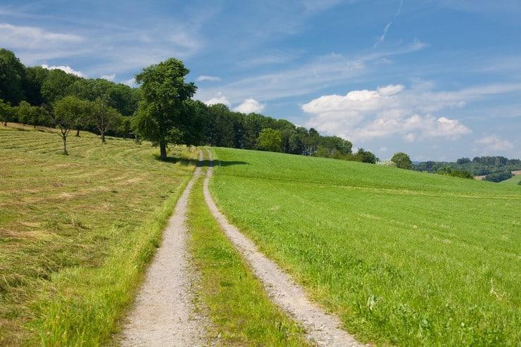 Можно ли поменять назначение земельного участка находящийся в собственности