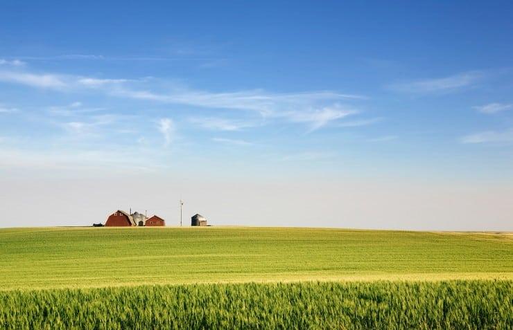 Что такое обременение земельного участка и как его снять?