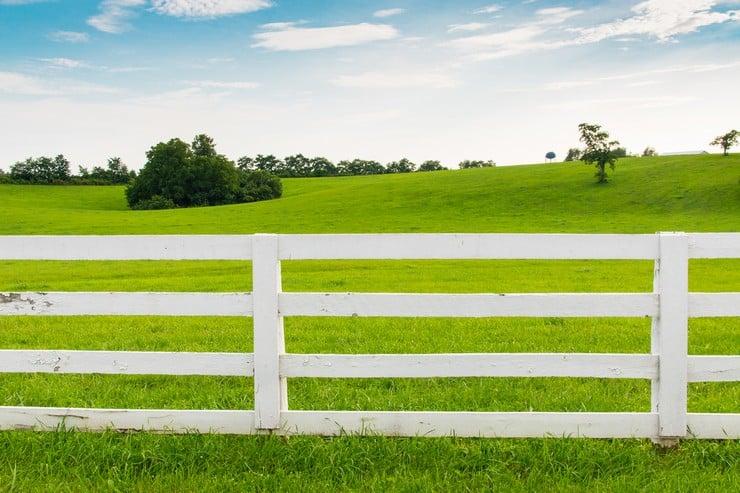Эксплуатация земельных участков для ведения ЛПХ